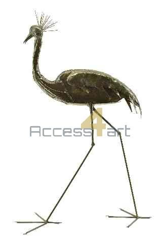 Kroon kraanvogel lopend BCCW