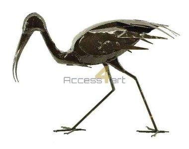 Heilige ibis lopend BIW