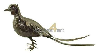 Metalen fazant, metalen vogel mannetje| Birdwoods